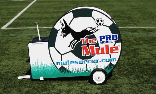Mule Pro Trainer